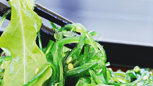 Zijn zeegroenten de groenten van de toekomst?