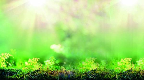 Constantis richt de schijnwerper op.... slim rapporteren over duurzaamheid