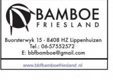 BBF Bamboe Friesland Tuin & meer