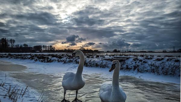 Oer-Hollands landschap grote winnaar fotowedstrijd