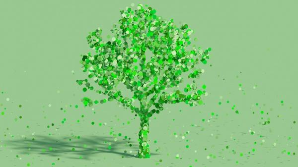 Organisaties die duurzaam en maatschappelijk ondernemen zijn meer waard
