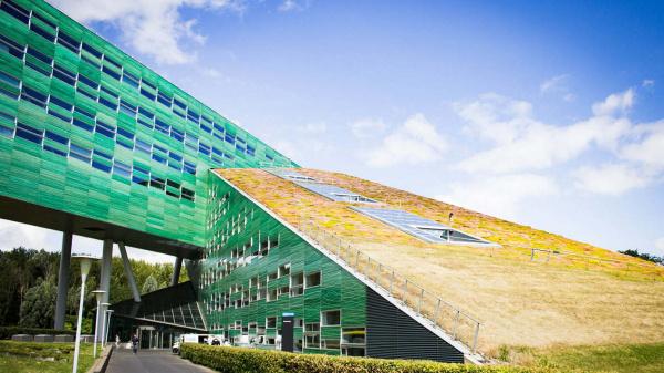 Hanzehogeschool leidt landelijk praktijkonderzoek groenblauwe klimaatadaptatie