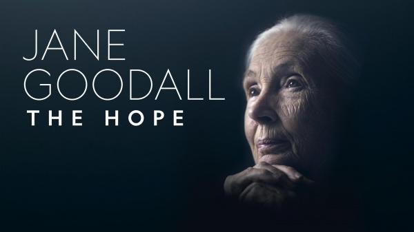 Nieuwe film van natuuractivist op leeftijd: dr. Jane Goodall (86) geeft hoop