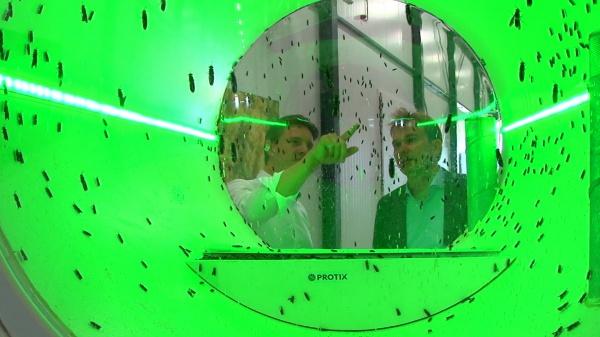 Protix uitgeroepen tot winnaar van Nederlandse Innovatie Prijs 2020