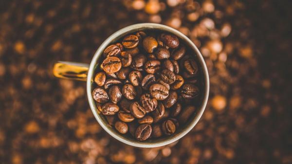 Sociale impact met duurzame koffie